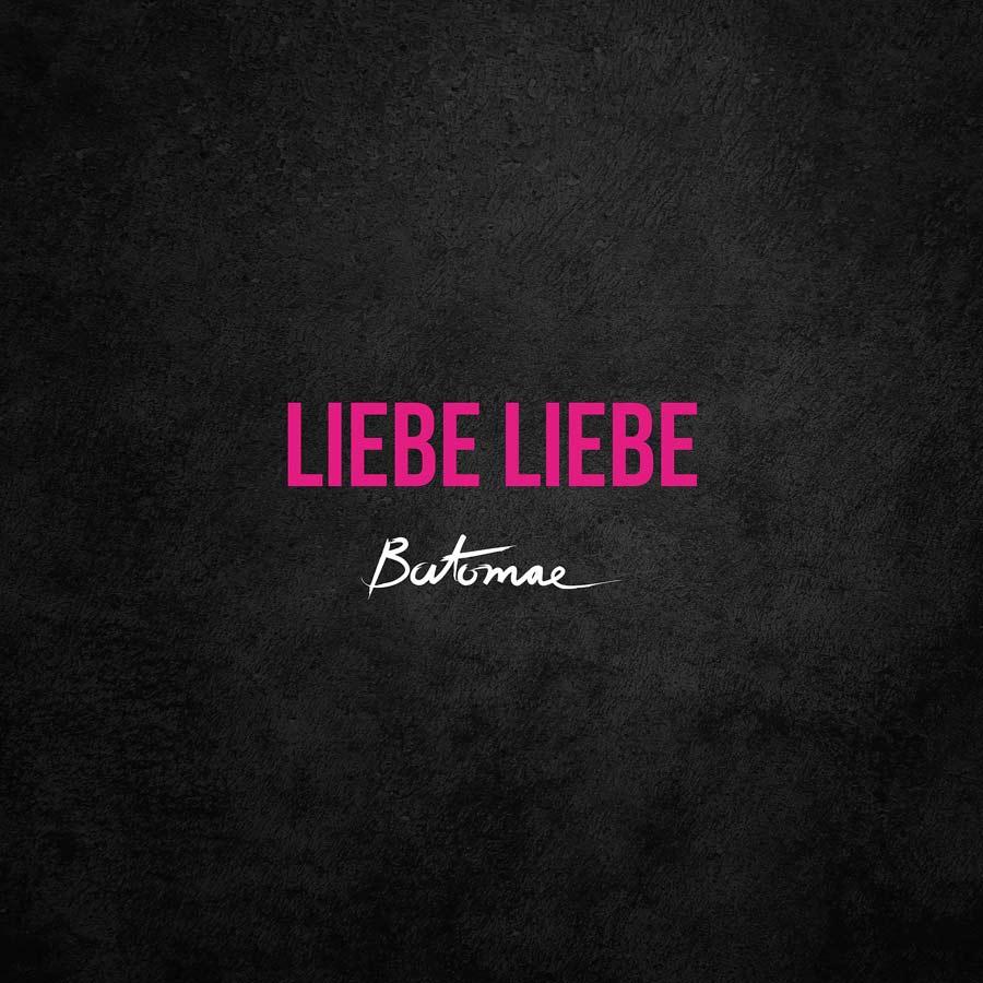 Liebe Liebe (Single)